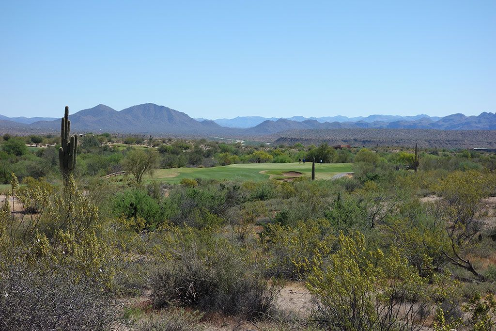 15th Hole at We-Ko-Pa (Cholla) (327 Yard Par 4)
