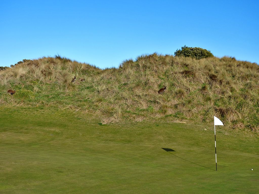 4th Hole at Barnbougle (Dunes) (296 Yard Par 4)