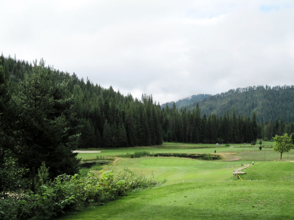5th Hole at Priest Lake Golf Course Hole at Priest Lake (166 Yard Par 3)