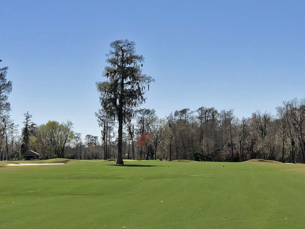 11th Hole at TPC Louisiana (546 Yard Par 5)