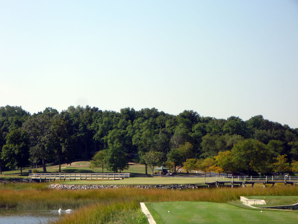 11th Hole at Creek Club (200 Yard Par 3)