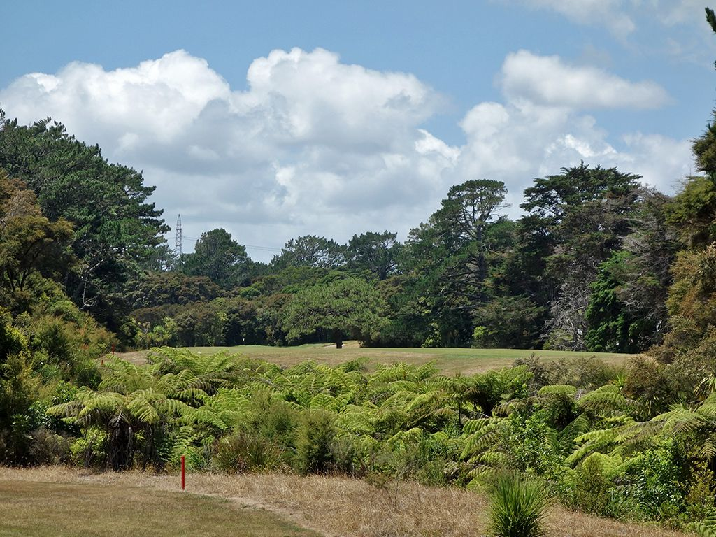 13th Hole at Titirangi Golf Club (511 Yard Par 5)