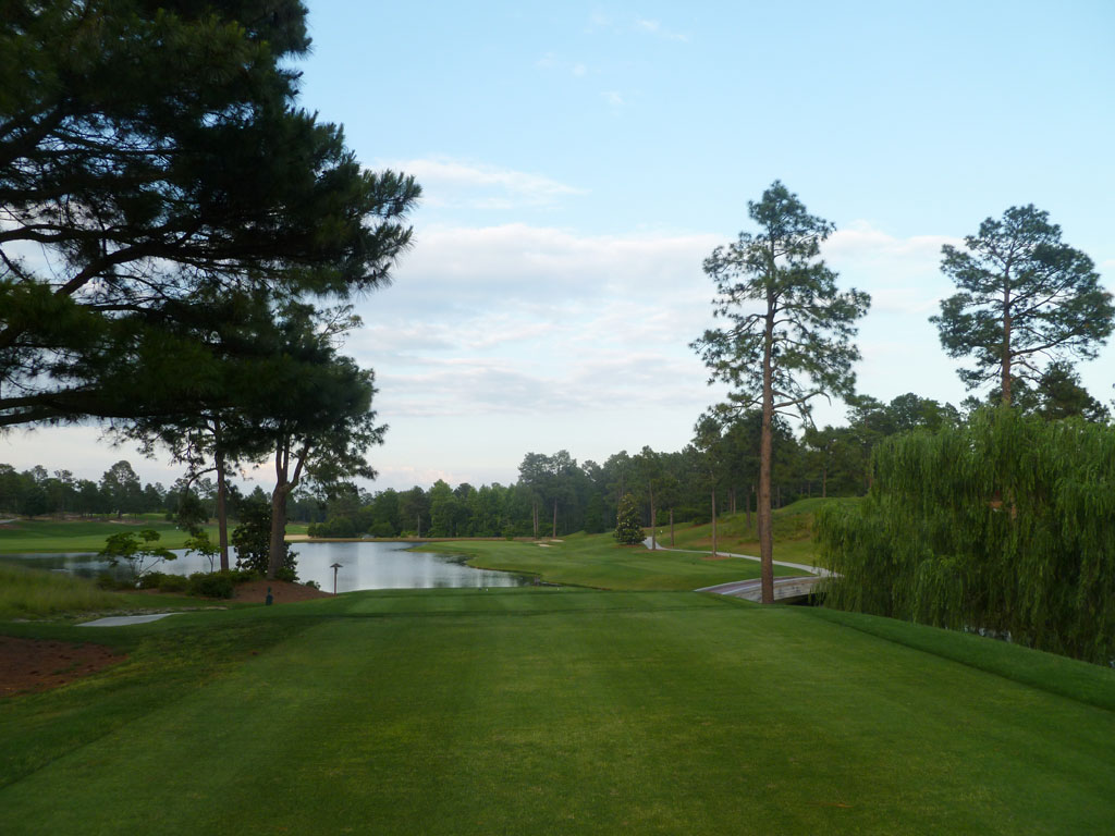 14th Hole at Pinehurst Resort No.4 (229 Yard Par 3)