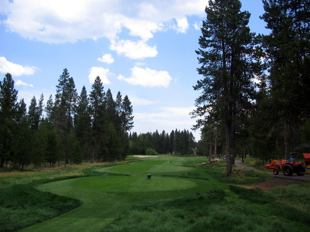 8th Hole at Sunriver Resort (Meadows) (213 Yard Par 3)
