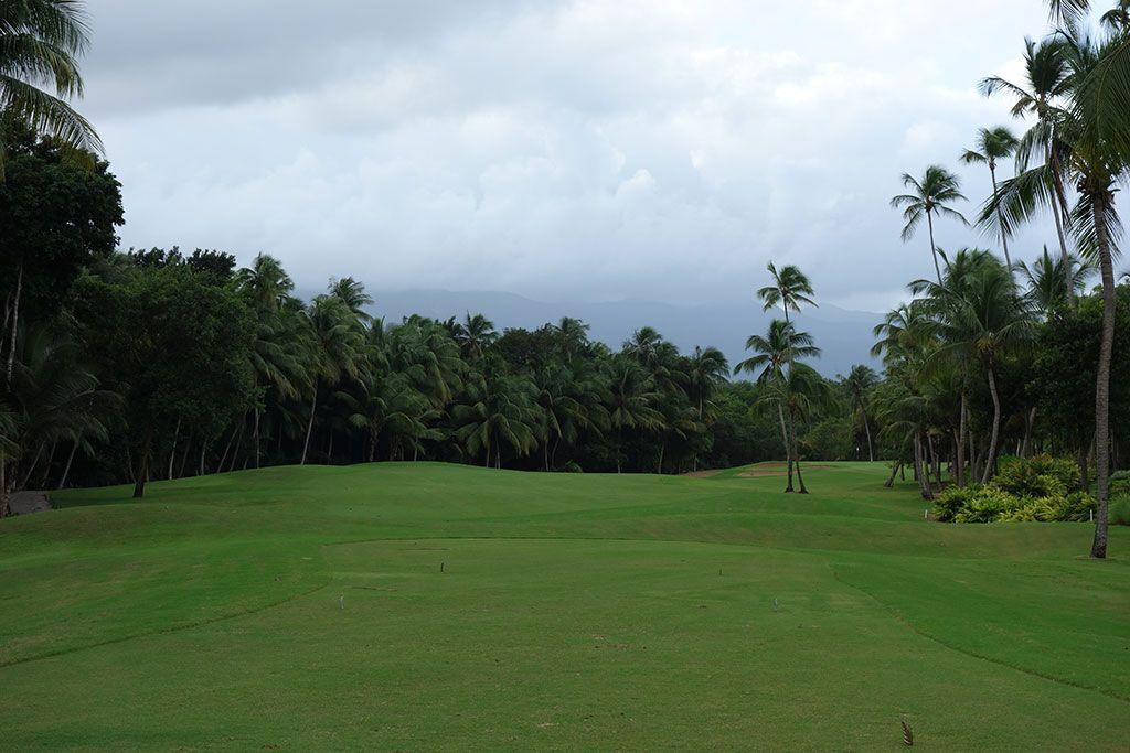 10th Hole at Bahia Beach Resort and Golf Club (316 Yard Par 4)