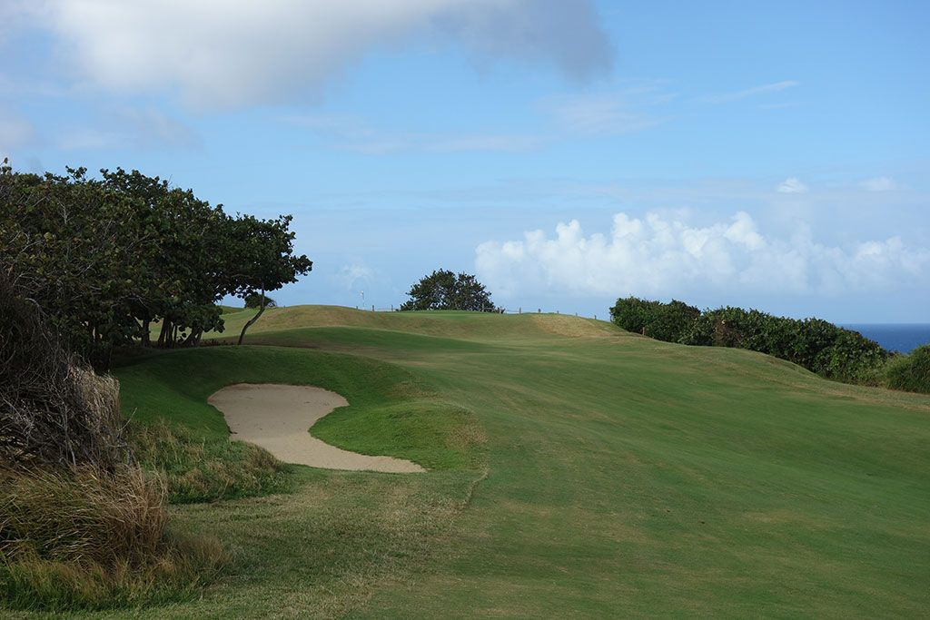 12th Hole at Royal Isabela (435 Yard Par 4)