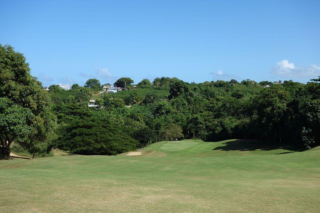 3rd Hole at Royal Isabela (375 Yard Par 4)