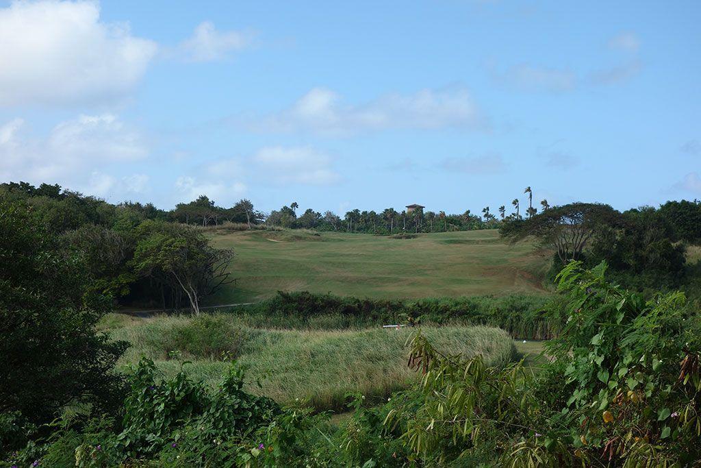 6th Hole at Royal Isabela (493 Yard Par 4)