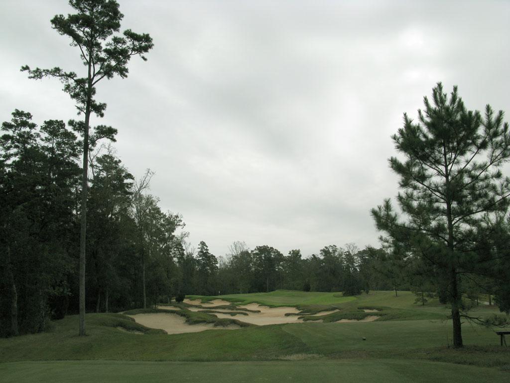 16th Hole at Carlton Woods (Fazio) (207 Yard Par 3)
