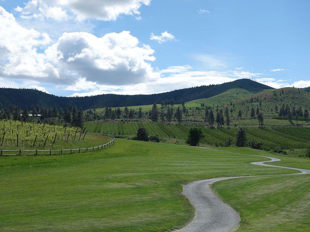 8th Hole at Bear Mountain Resort (551 Yard Par 5)