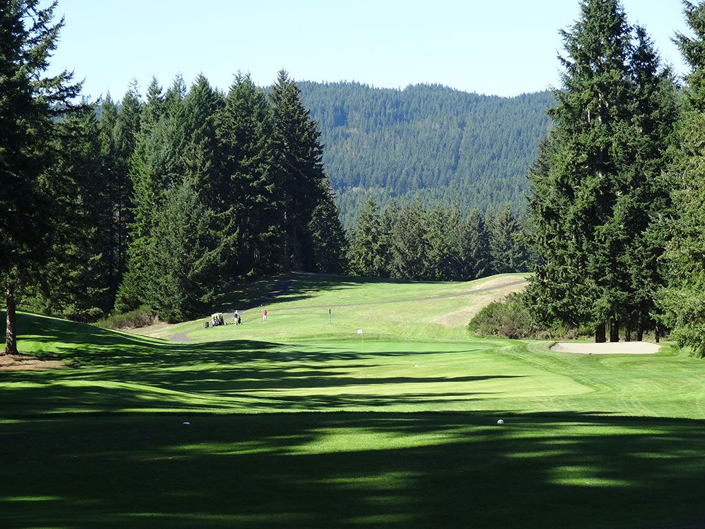 14th Hole at Gold Mountain (Cascade) (228 Yard Par 3)