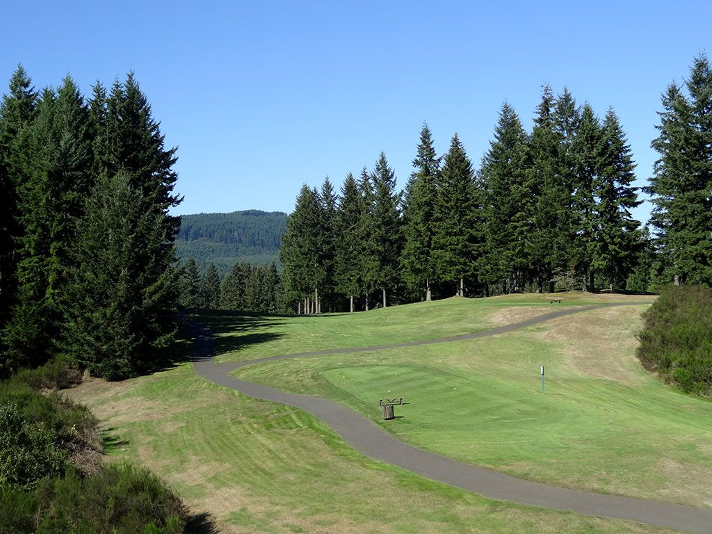15th Hole at Gold Mountain (Cascade) (609 Yard Par 5)