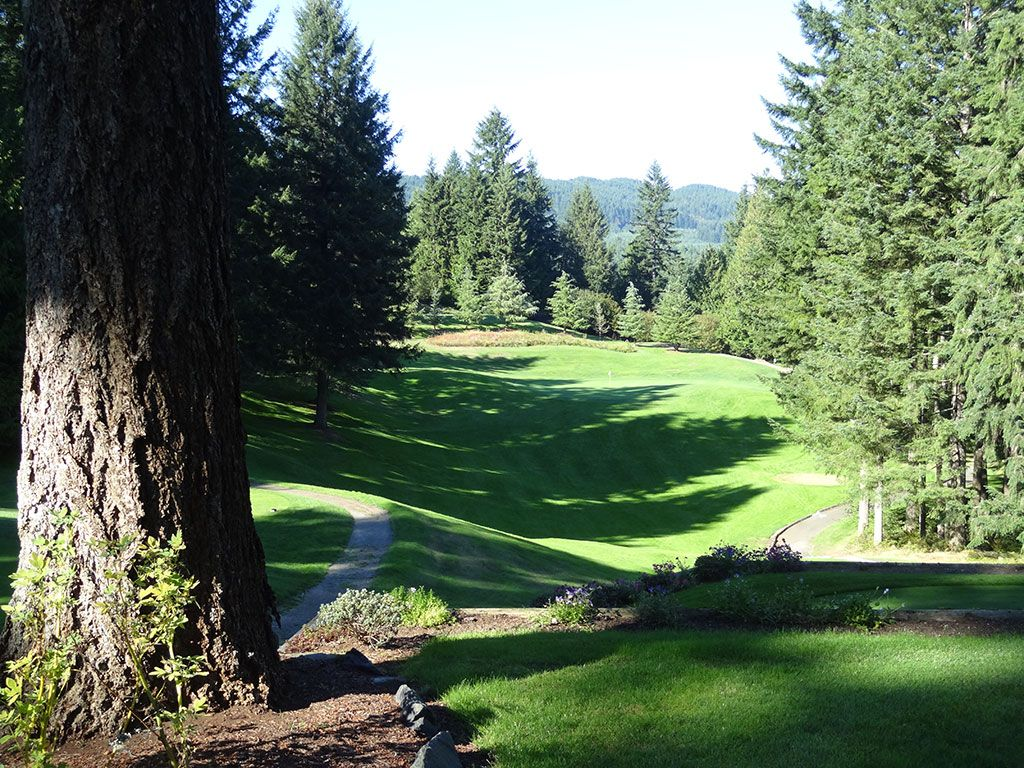 17th Hole at Gold Mountain (Cascade) (167 Yard Par 3)