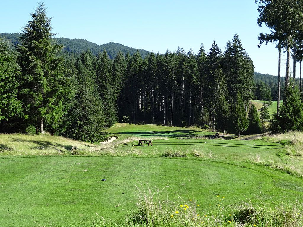 12th Hole at Gold Mountain (Olympic) (251 Yard Par 3)