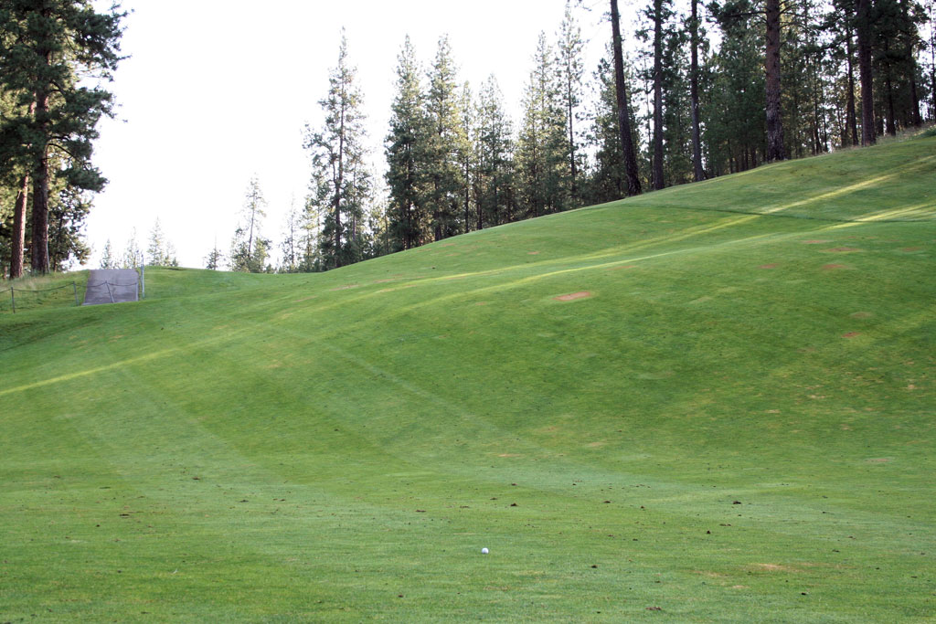 13th Hole at Creek at Qualchan (333 Yard Par 4)