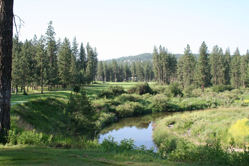16th Hole at Creek at Qualchan (503 Yard Par 5)