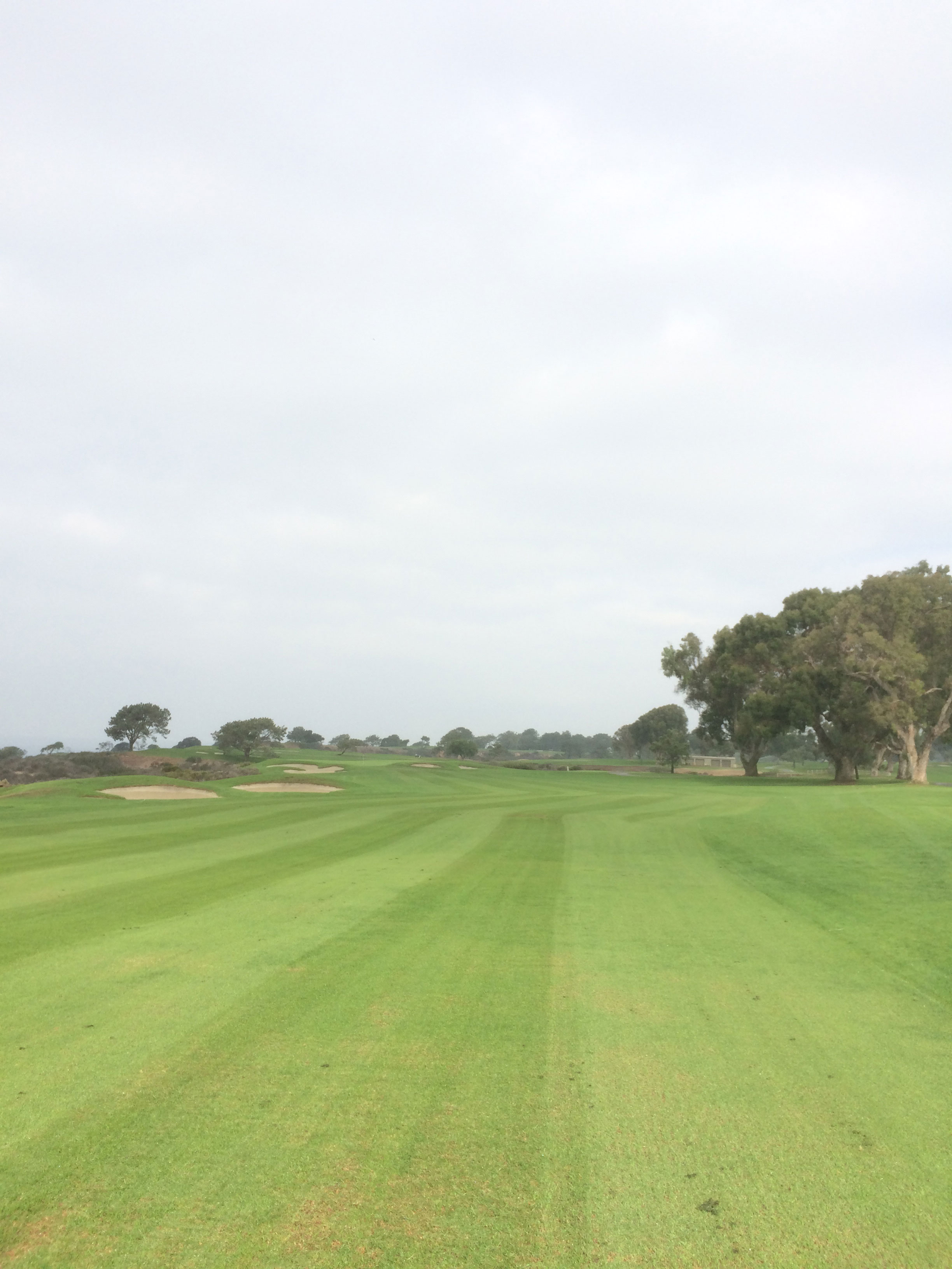 Torrey Pines (South) 14th hole