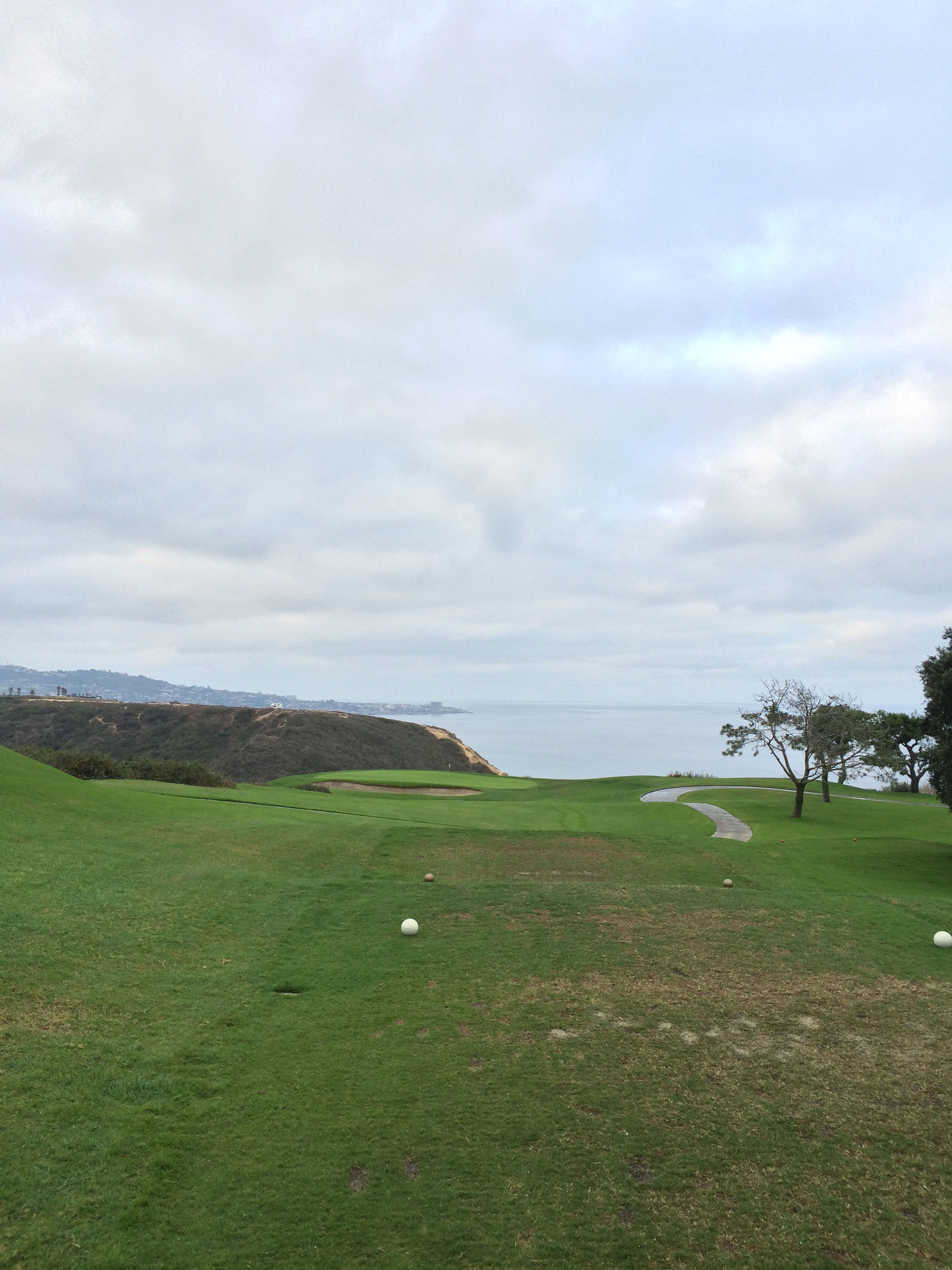 The hole everyone talks about at Torrey Pines, the ocean laden 3rd